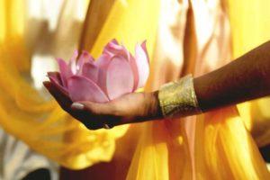 Fleur de lotus dans une main